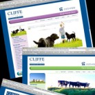 Cliffe Vetinary Group website
